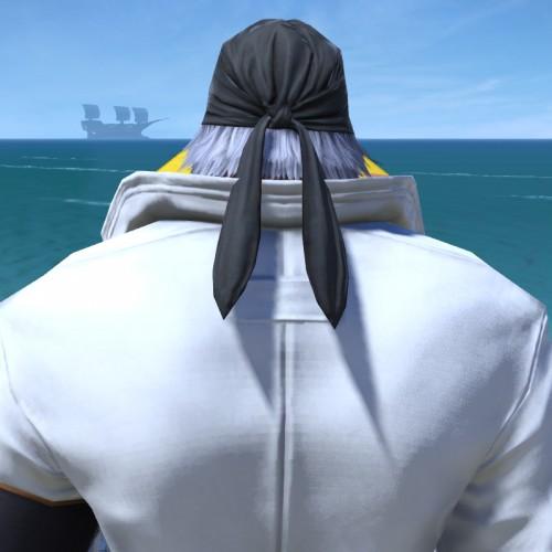 FF14シーズナルイベント『閃光の影向』:スノウの髪型(ルガディン)